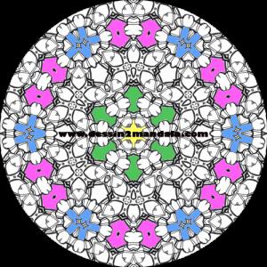 mandala à colorier numéro 12