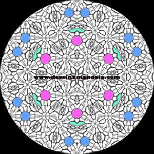 mandala à colorier numéro 24
