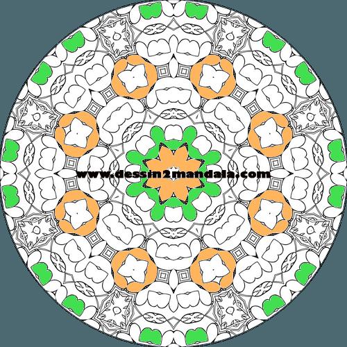mandala à colorier numéro 44