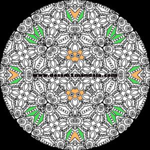 mandala à colorier numéro 48